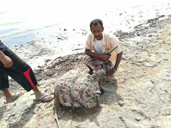 استشهاد وإصابة 13 صياداً بلغم حوثي بحري انفجر بقاربهم بالقرب من المياه الدولية في الحديدة